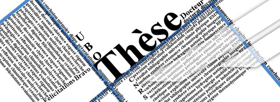 Soutenance de thèse de M. Thomas LE BIHAN