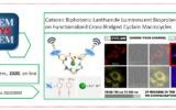 New publication in ChemPhysChem